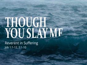 Though You Slay Me sermon series